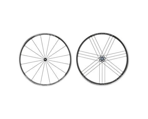 Campagnolo Zonda Wheelset (Black) (Campagnolo 10/11/12) (QR x 100, QR x 130mm) (700c / 622 ISO)