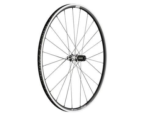 DT Swiss PR1600 Spline 23 Rear Wheel (Black) (Shimano/SRAM 11spd Road) (QR x 130mm) (700c / 622 ISO)