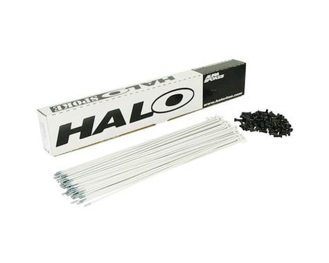 Halo Wheels Aura 14g (white) Spoke (262mm)