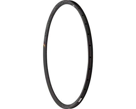 HED Belgium Plus Disc Brake Rim (Black)