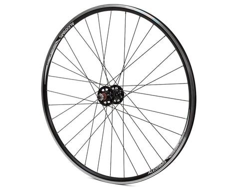 Quality Wheels Track Double Wall Rear Wheel (Black) (Freewheel) (10 x 120mm) (700c / 622 ISO)