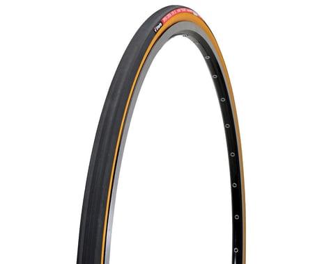 Vittoria Open Corsa Evo SC Clincher Road Tire - Closeout! (Black)