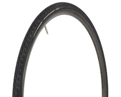 Vittoria Randonneur II Classic Tire (Black) (25mm) (700c / 622 ISO)